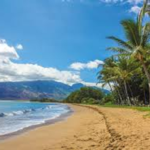 Ultimate Hawaii Snorkel Guide (Infographic)