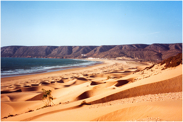img4 - The Environmentally Friendly Landcape of Morocco